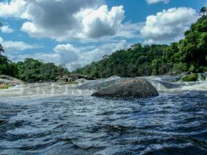 Suriname – Den Zierfischen auf der Spur