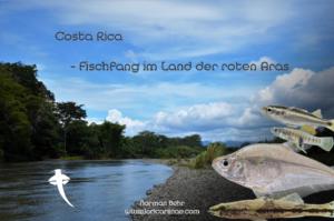 """Vortrag: Costa Rica-""""Fischfang im Land der roten Aras"""""""